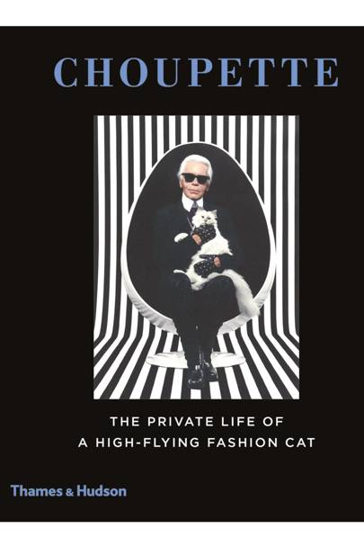 Choupette: The Private Life of a High-Flying Fashion Cat  by Patrick Mauriès and Jean-Christophe Napias