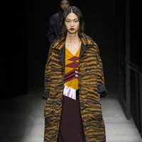 Tiger-Print Warmth From Bottega Veneta