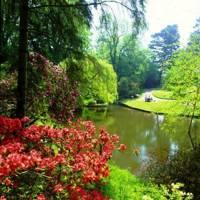 Clyne Garden