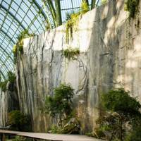 Chanel Falls