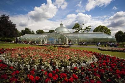 Glasgow Botanic Garden