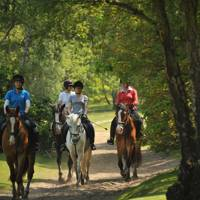 For Country Pursuits: Wimbledon Village Stables
