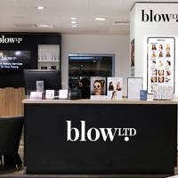 Blow Ltd