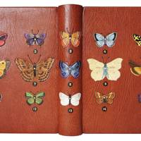 Book Conservation And Binding