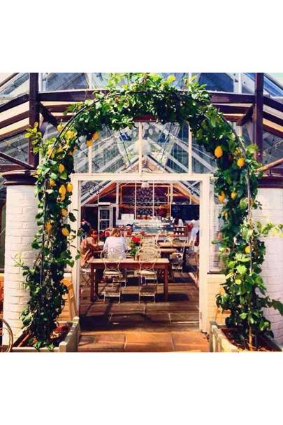 The Quince Tree Cafe At Clifton Nurseries