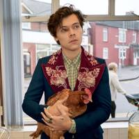 b705c75f565 Harry Styles Is The Face Of Gucci s Tailoring Campaign