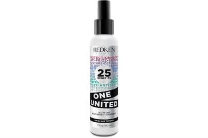 Redken One United Multi-Benefit Hair Treatment