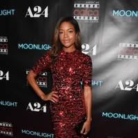 Moonlight screening, Atlanta – October 17 2016