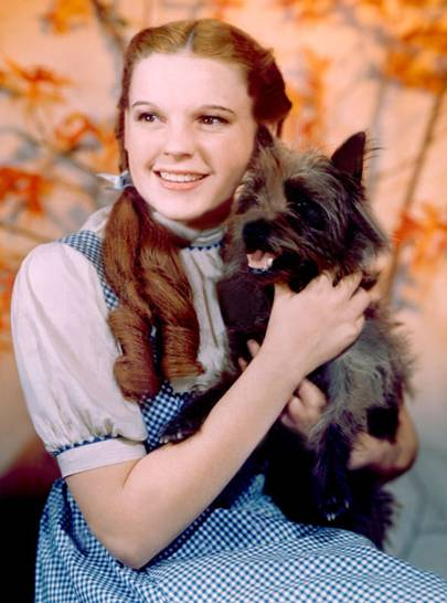 The American Dream of Judy Garland