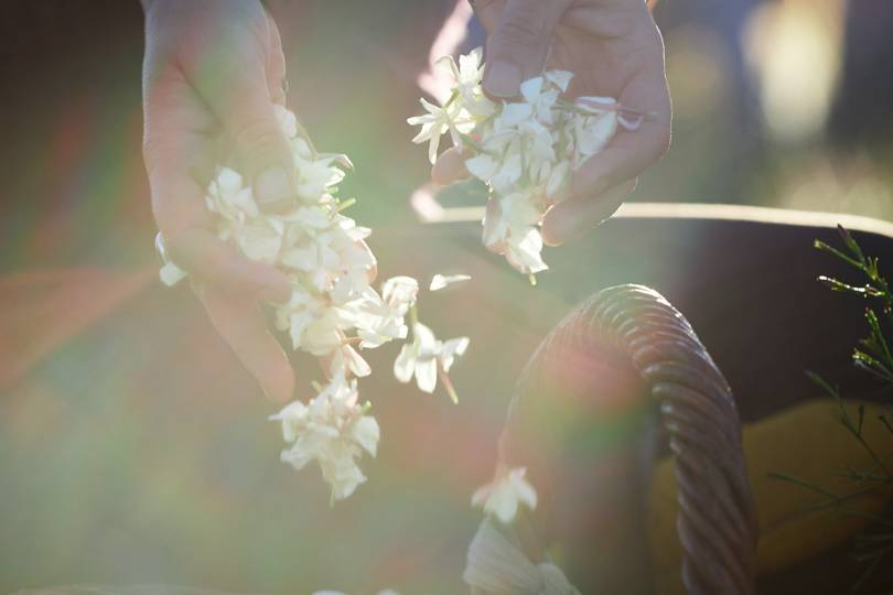dior jasmine harvest video british vogue