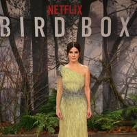 'Bird Box' Premiere, Berlin - November 27 2018