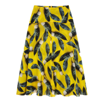 The Sunshine Skirt