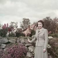 September 1952