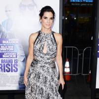 Our Brand Is Crisis premiere, LA - October 26 2015