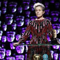 Frances McDormand praised Three Billboards-style activism
