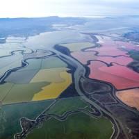Salt ponds, San Francisco Bay