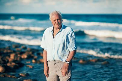 Sir David Attenborough filming Blue Planet II
