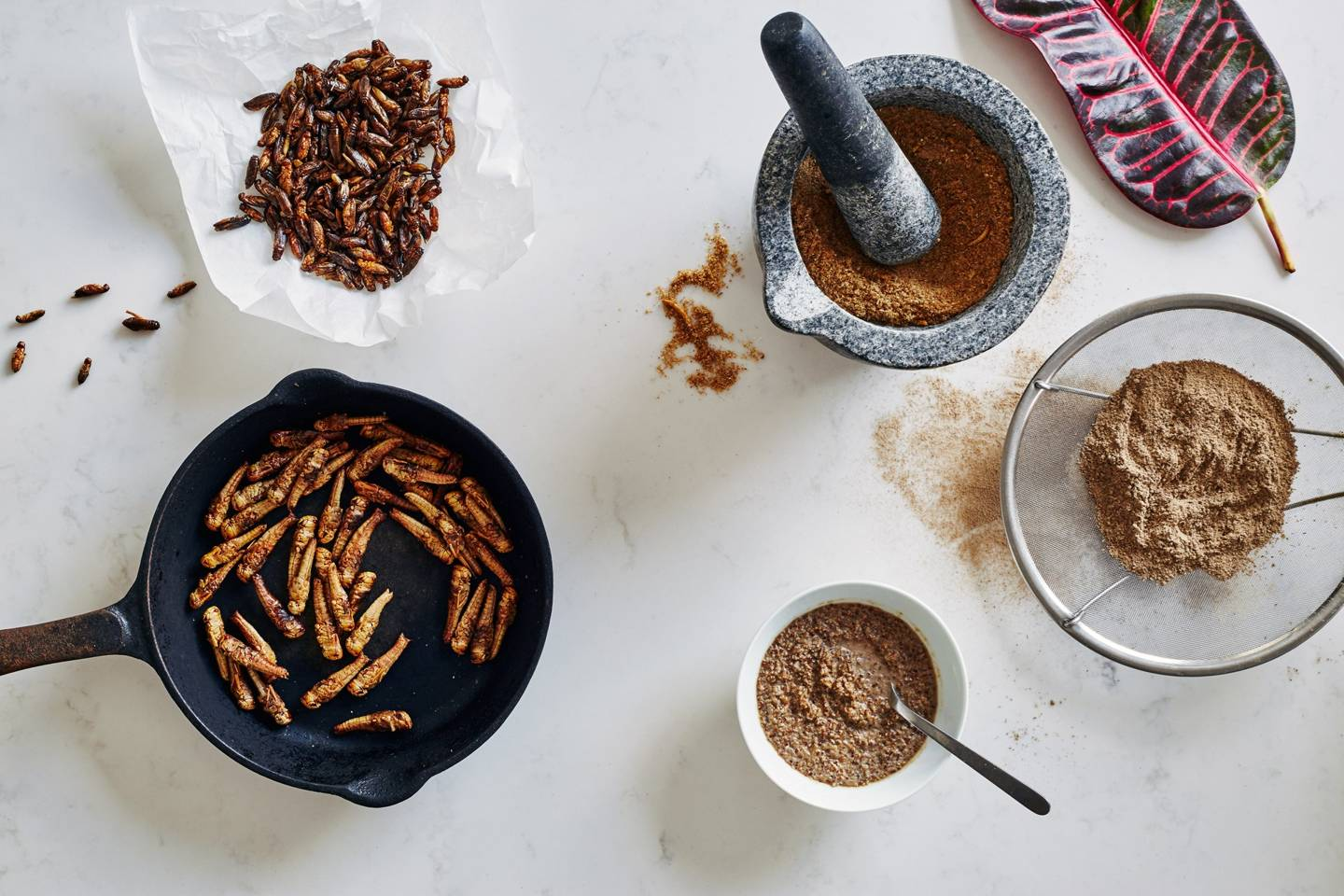 From Soil To Supper Club: Vogue Tries Eating Grubs How To Eat Fried Worms