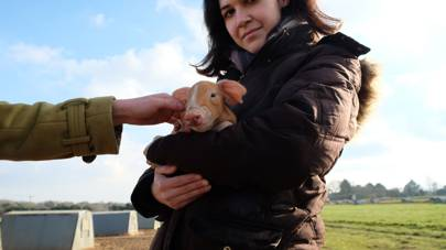 Joanna holding a piglet in Suffolk, near her home