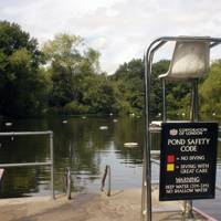 Hampstead Heath Ladies' Pond