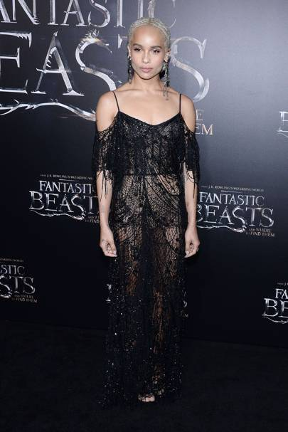 Fantastic Beasts And Where To Find Them Premiere, New York - November 10 2016