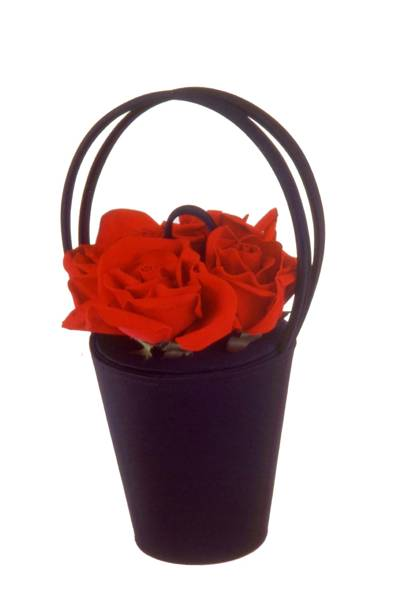 1993 - The Rose Basket