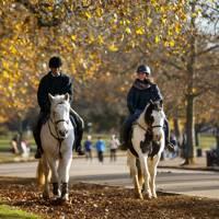 Go horse-riding through central London