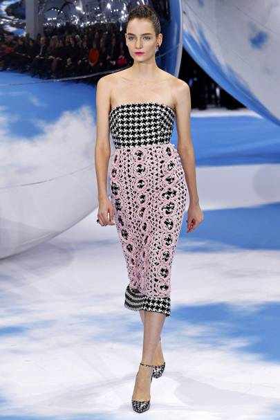 D is for Dogtooth