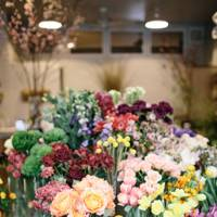 Favourite Flower Shop: Sprout Home