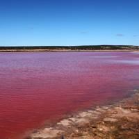 Hutt Pink Lagoon, Western Australia