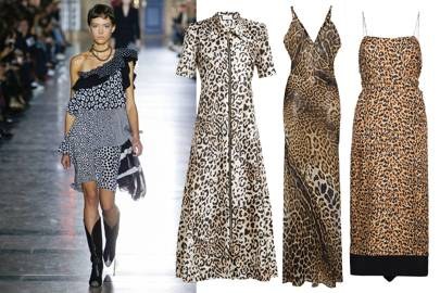Leopard Appeal