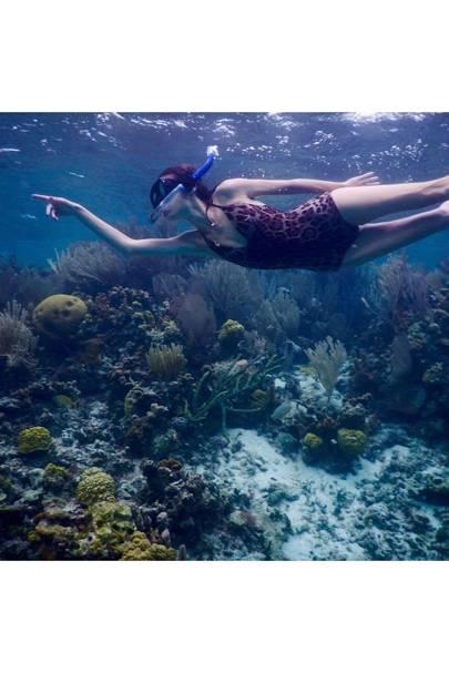 Island Dive