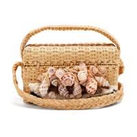Sanayi 313: Iris seashell bag