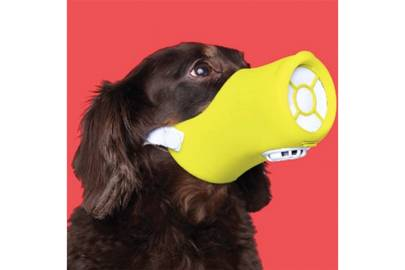 Dog Pollution Mask