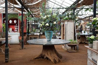 Petersham Nurseries, London