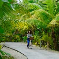 The Daylight Activity: Cycling