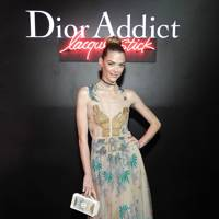 Dior Addict Lacquer Stick Launch, Hollywood - February 8 2017