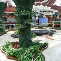 The Shopping Destination: Mall of Qatar