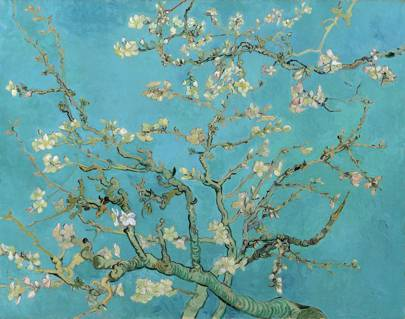 Almond Branches in Bloom (1890)