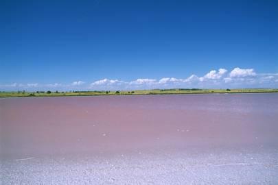 Pink Lake, Meningie - Australia