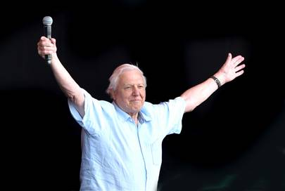 Sir David Attenborough conquered the Pyramid Stage