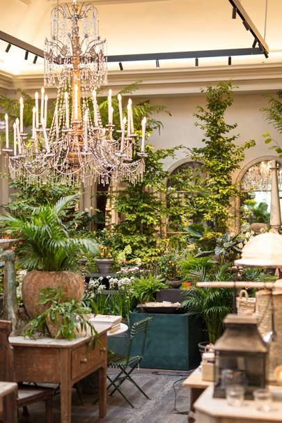 The Pit Stop: Petersham Nurseries, Covent Garden