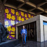 The Cultural Hub: Palm Springs Art Museum