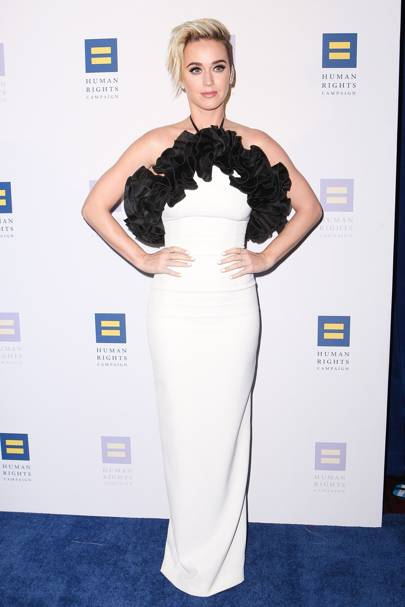 The Human Rights Campaign Gala Dinner, Los Angeles - March 18 2017