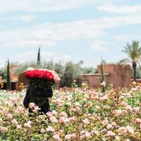 The Beldi Country Club, Marrakesh