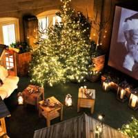 The Berkeley's Winter Cinema